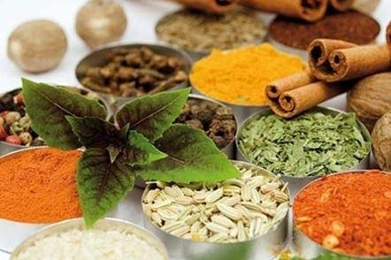 درمان خانگی بعضی از بیماریهای رایج با کمک طب سنتی